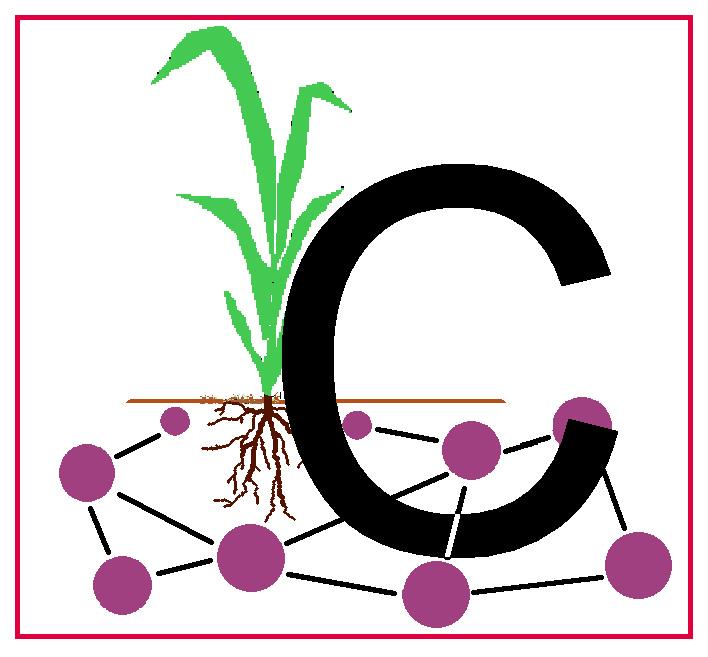 Carbon Flow