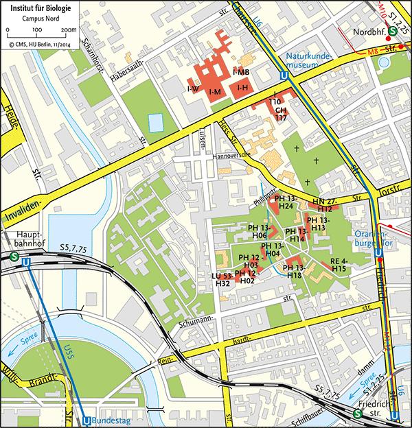 Lageplan Mitte